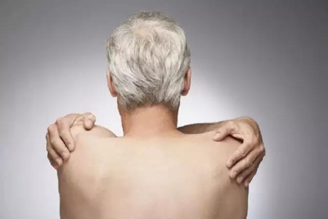 身体无组织结构图头发